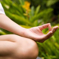 mudra-in-meditation